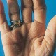 Tripe Palms picture